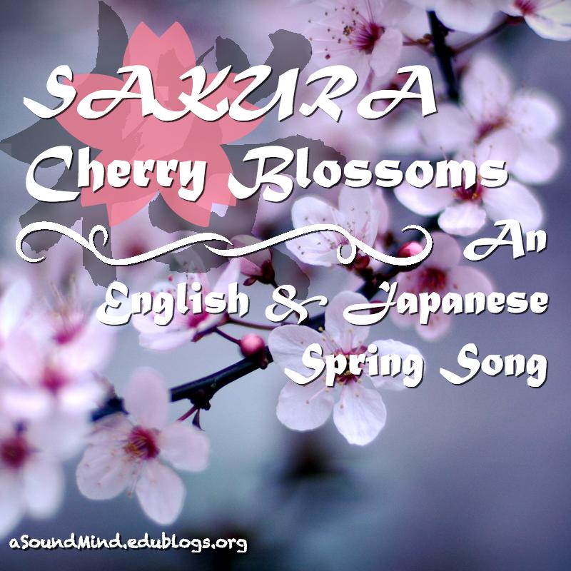Sakura Cherry Blossoms A Spring Song A Sound Mind